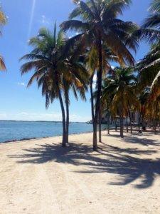 Study trip - Florida